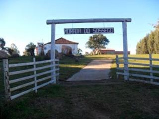 Fazenda Em Centro - Mi12813