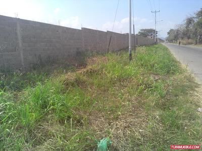 Terrenos - Tinaquillo - Entorno Inmobiliario