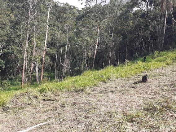 Terreno Bom E Barato. Lançamento Imperdível