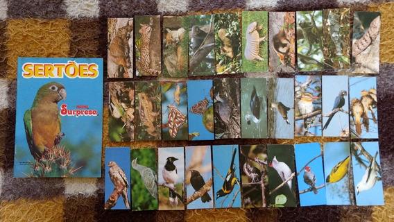 Chocolates Surpresa - Album Dos Sertões - Completo