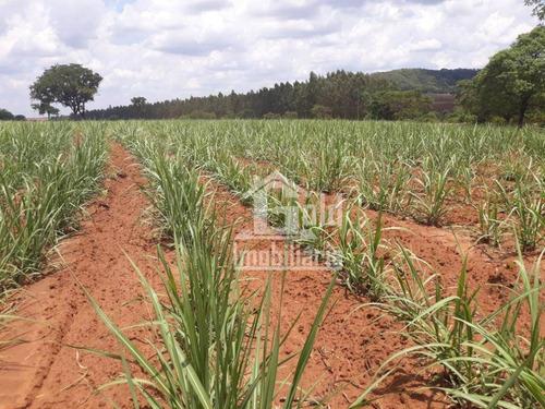 Fazenda À Venda, 503 Alqueires Por R$ 45.270.000 Na Cidade De  Cerqueira César/sp - Fa0079
