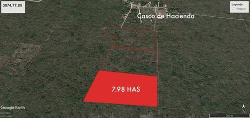 Imagen 1 de 13 de Terreno De 7.98 Has En Tixpéhual Yuc. A Espaldas De Casco De Hacienda.