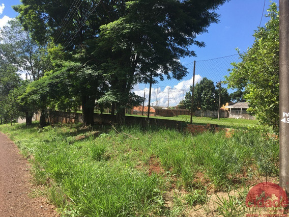 Terreno Para Venda - 96178.001