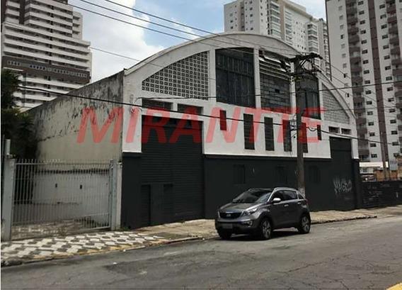 Galpao Em Tatuapé - São Paulo, Sp - 323146