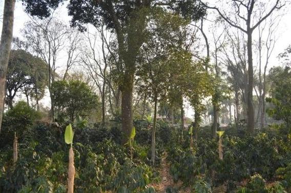 Terreno En Rancho San Felipe, Córdoba Veracruz.
