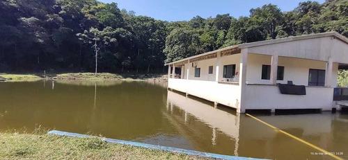 Iguapé/linda Fazenda//plantação De Palmito/criação/ref:05175
