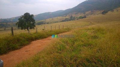 Fazenda Aptidão Mista 435 Ha Careaçú (mg) - Codigo: Fa0141 - Fa0141