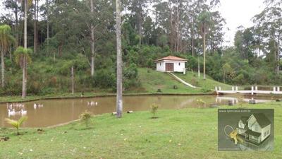 Sítio À Venda Caete (mailasqui) - São Roque/sp - Si0004