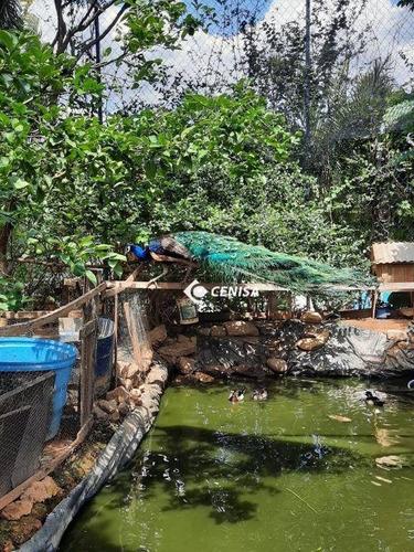 Imagem 1 de 29 de Chácara Com 3 Dormitórios À Venda, 1000 M² Por R$ 798.000,00 - Rural - Itupeva/sp - Ch0171