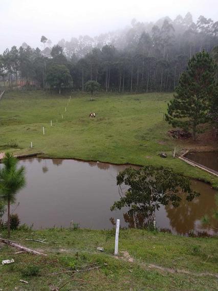 Belo Terreno Com Lago