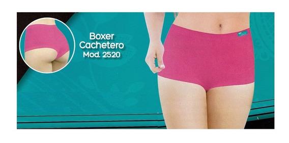 Boxer Cachetero Body Siluette Modelo 2520 Nylon Reforzado