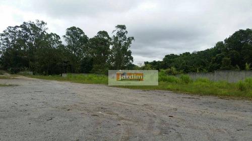 Imagem 1 de 3 de Terreno  Residencial À Venda, Alvarenga, São Bernardo Do Campo. - Te0417