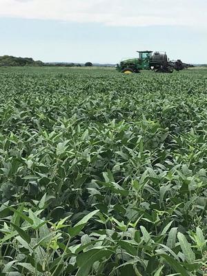 Fazenda A Venda Em Bela Vista - Ms (agricultura) - 1089