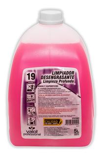 Limpiador Desengrasante Profundo X 5 Lts | Valot Oficial