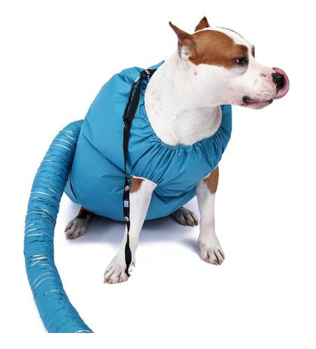 Secagem Rápido Banho Secador Cão Para Cão Estimação Médio Cã