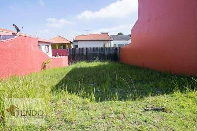 Terreno À Venda, 300 M² Por R$ 580 - Parque Dos Pássaros - São Bernardo Do Campo/sp - Te0005