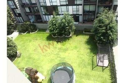 Departamento En Renta Alter Desierto De Los Leones, Amplios Espacios, 3 Rec, 2 Est, Amenidades, Roof Garden Privado, Moderno Edificio