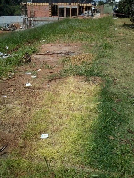 Terreno Residencial À Venda, Jardim São Luiz, Jandira - Te0423. - Te0423