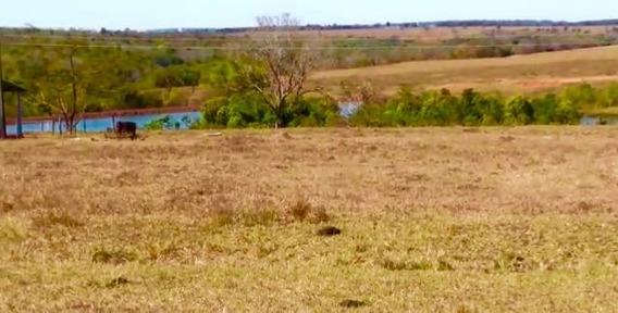 Fazenda A Venda Em Camapuã - Ms (pecuária) - 789