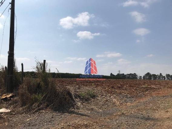 Terreno À Venda, 20900 M² Por R$ 2.717.000 - Limeira - Limeira/sp - Te0230