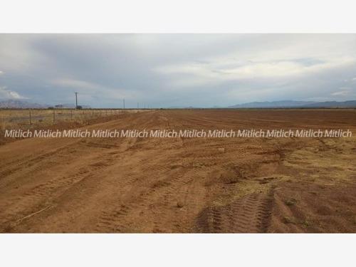 Rancho En Venta Venta De 30 Has Para Cultivo $5,800,000