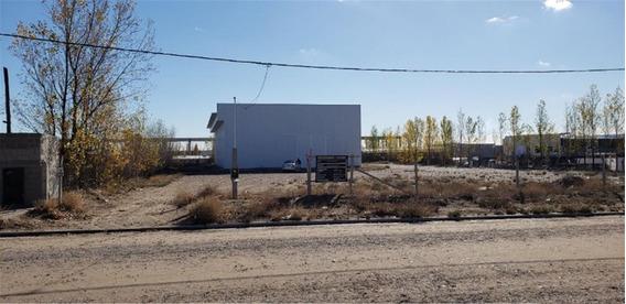Alquilo Galpón 700 M2 En Parque Industrial Neuquén