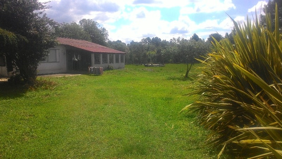Terreno De 1500 M² E 2 Residências No Jd. Das Acácias Em Quatro Barras - Ca00047 - 32243351