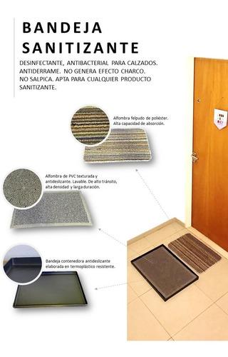 Imagen 1 de 3 de Bandeja Sanitizante Con Felpudo + Alfombra Secadora 60x40cm