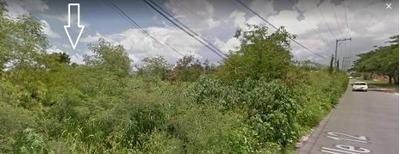 Venta De Terreno En Temozón Norte