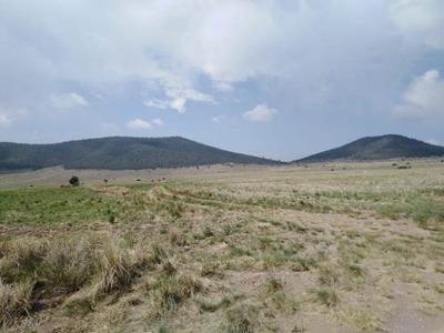 Se Vende Terreno De Uso Mixto De 54 Hectáreas En La Sierra De Arteaga