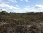 Imagen 1 de 7 de Terrenos En Uman
