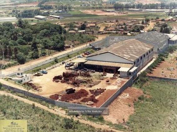 Area Ou Galpão, Ótimo Para Investimentos - 4181-1