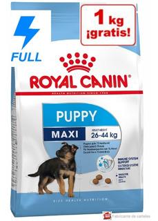 Royal Maxi Puppy 20kg A Granel + Jugutete Gratis