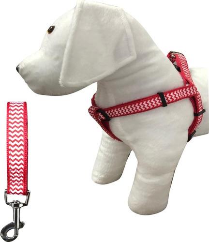Coleira Peitoral Guia Cachorro Raças Pequenas Poodle Pug