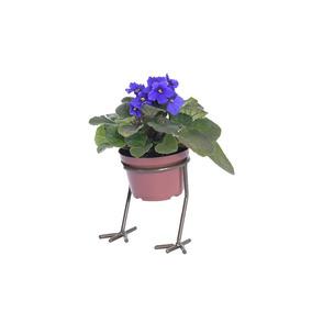 Suporte Vaso 9,5 Cm Ferro Modelo Pé De Galinha Eisengarten