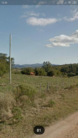 Chacra Hermosa Vista
