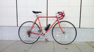 Bicicleta Carrera Olmo