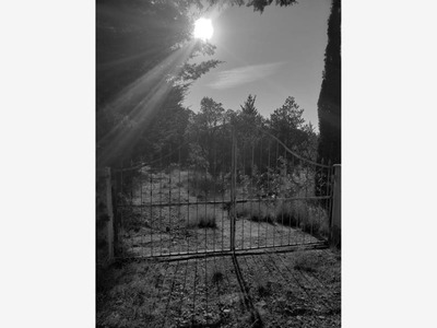 Rancho En Venta San Jose Itho