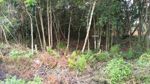 Terreno Parcelado Em Itanhaém, Analisa Carro