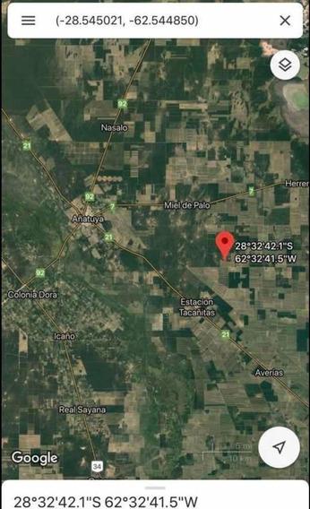Campo En Tacañitas. Santiago Del Estero. 500 Has Agrícolas