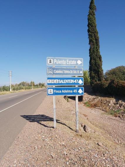 Campo 110 Has Tupungato, Mendoza