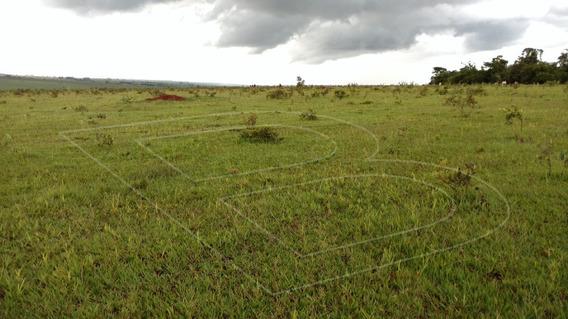 Fazenda Para Venda : Ref:020454.05 - 020454.05