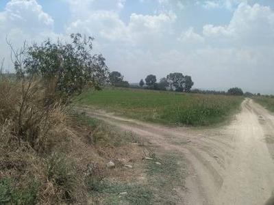 Terreno Industrial Camino A Bernal Bien Ubicado
