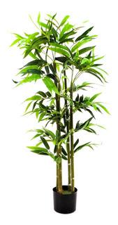 Bambú Verde Con Macetero 4 Varas Green Outlet Envío Gratis