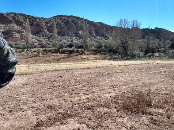Campo En Calete, Quebrada De Humahuaca