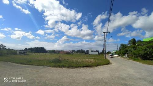 Terreno Para Venda Em Garopaba, Campo Duna - 1000_2-1174819
