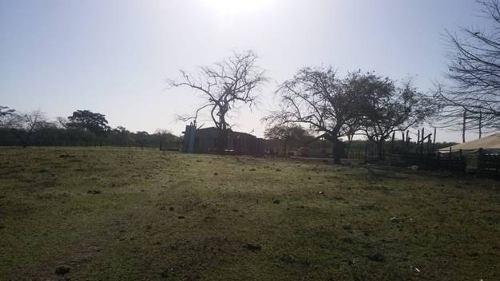 Se Vende Rancho El Pital (la Ciénega)