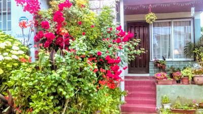 Casa De 4 Dormitorios 3 Baños, Estacionamientos, Piscina.