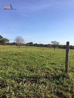 Fazenda À Venda, Rural, São Simão. - Fa0021