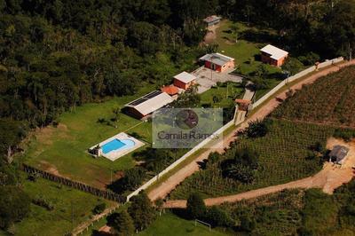 Chácara Residencial À Venda, Trevo, Santa Isabel. - Ch0023